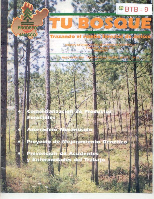 TU BOSQUE 09 1998