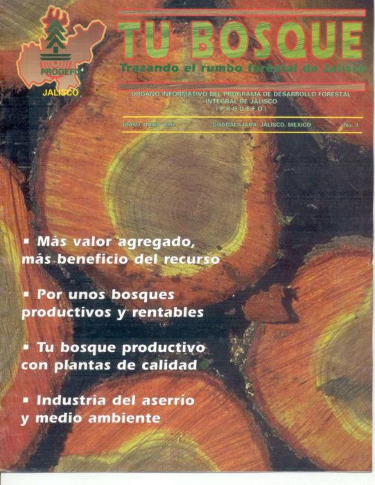 TU BOSQUE 03 (1997)